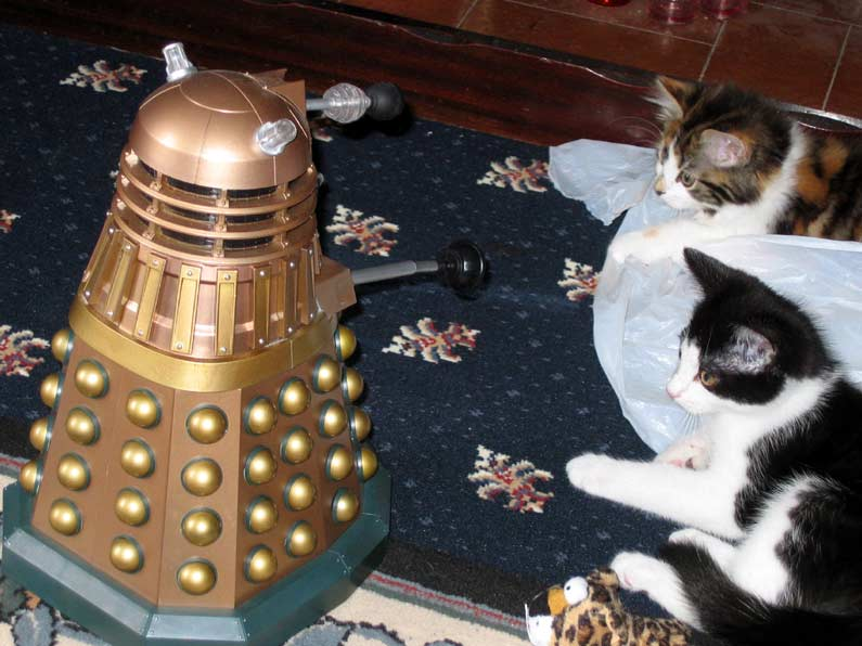 Dalek invasion living room